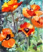 Red Poppies  In Acrylic